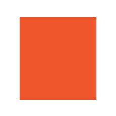 tnncourses-icon